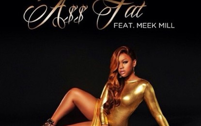 """TRINA TALKS ABOUT HER NEW SINGLE  FEA MEEK MILLS """"ASS FAT"""" AND HER NEW CD [VIDEO]"""